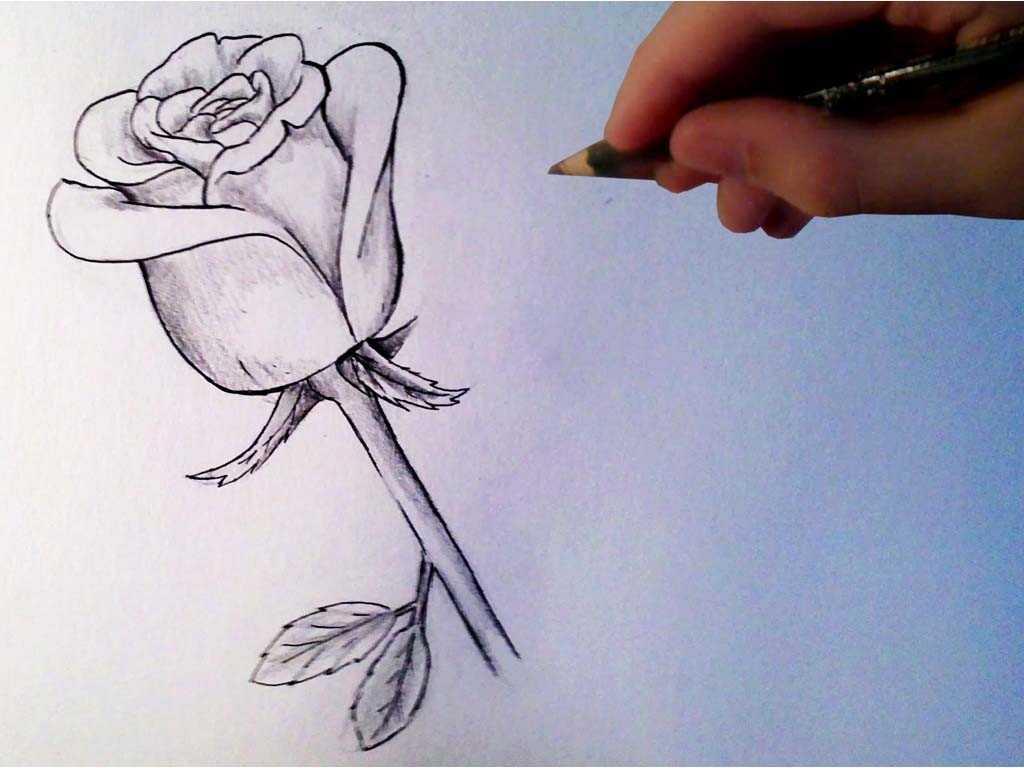 Картинки красивые чтобы нарисовать не сложные