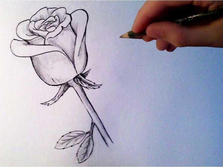 Красивые рисунки для срисовки: примеры рисунков, мастер-классы для начинающих и мастеров (150 фото)
