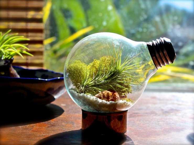 Поделки из лампочек своими руками: как сделать популярные поделки из лампочек разного вида (110 фото)