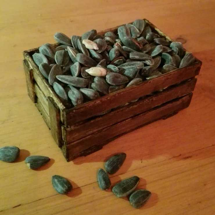 Поделки из семечек - пошаговая инструкция как сделать классные поделки из семян (125 фото)