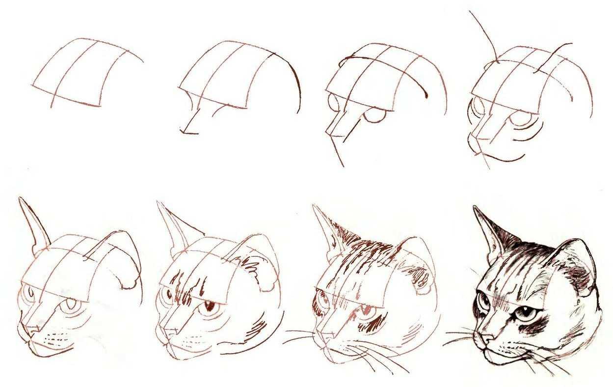 Срисовки для мальчиков: пошаговый мастер-класс как научиться делать срисовку (135 фото и видео)