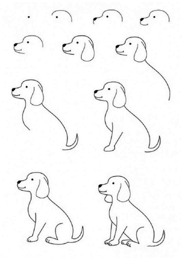 Рисовать поэтапно картинки для срисовки карандашом